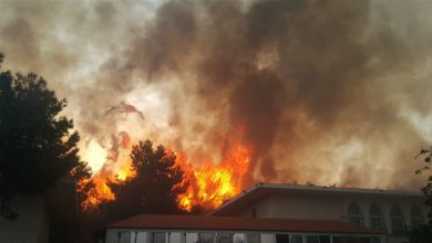 Photo of حرائق لبنان : عشرات الضحايا وإسرائيل تستغل الحريق لبناء حائط إسمنتي