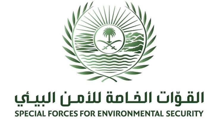 الأمن البيئي