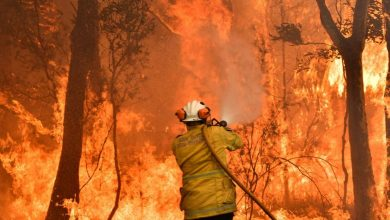 Photo of حرائق استراليا كارثة عالمية تخرج عن السيطرة ومشاهد مرعبة