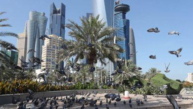 Photo of الإمارات تصرف 500 مليون درهم للحماية من الفيضانات والبنية التحتية