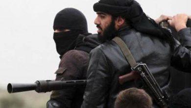 عودة داعش