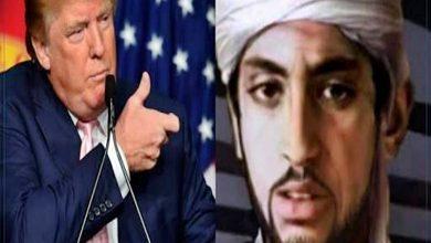 تصفية حمزة بن لادن