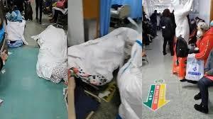 جثث ضحايا كورونا
