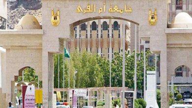 Photo of جامعة ام القرى وجامعة الطائف وجامعة الباحة يعلنون نتيجة القبول