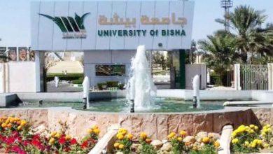 Photo of كافة المعلومات عن جامعة بيشة .. الكليات والأقسام وخطوات التسجيل
